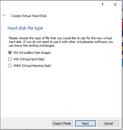 Virtual Machine Hard Disk Type